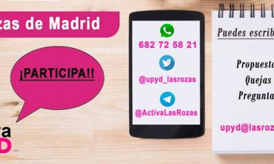 UPYD Las Rozas